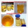 Steroid-Öl-Testosteron Enanthate 100mg/Ml Prüfung Enanthate 300mg/Ml Einspritzungen für Muskel-Gebäude