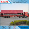 Spannweiten-Kasten/Schlussteil Vantype Logistics Transportion halb