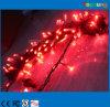 De Fee LED String van Light 10m 110/220VAC van het huwelijk