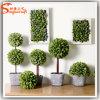 熱い販売の屋内人工的な小型装飾刈り込み法の草の球