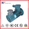 Motor de C.A. da indução elétrica com conversão de freqüência
