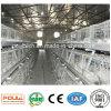 Matériel automatique de ferme avicole de cage de grilleur de ferme de grilleur