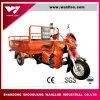 Triciclo grande adulto eléctrico del cargo/deriva eléctrica Trike/alimentadores de granja