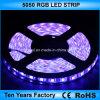 12V impermeabilizzano la striscia 300 LED RGB di SMD 5050 LED