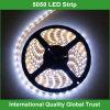 12V 5000k 5050 SMD СИД Strip Light Light