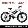 Bici elettrica grassa verde di potere 48V per il servizio dell'Europa