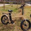 세륨을%s 가진 뚱뚱한 타이어 전기 자전거를 접히는 20 인치 250W/350W/500W
