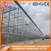 China-Landwirtschaft Multi-Überspannung ausgeglichenes Glas-grünes Haus