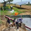 Pompa ad acqua solare sommergibile ad alta pressione del pozzo profondo del pozzo trivellato