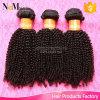 Alibaba-Выразьте волос 6A девственницы перуанского Afro Kinky курчавые Unprocessed (QB-PVRH-DW)