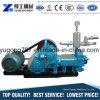 Pompe de mortier de la colle de l'approvisionnement Bw250 d'usine à vendre