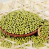 Green commestibile Mung Bean per Wholesale