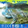 Récolteuse de mauvaises herbes aquatiques Julong/ de l'eau pour la vente de la machine de collecte de la corbeille