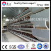 Cage directement galvanisée de poulet d'usine de la Chine