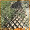 Duurzaam Gelast HDPE Zwart Net Geocell