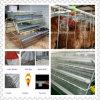 비용 능률적인 닭 감금소 Breeding 장비와 조립식 가옥 Poutry 집