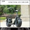 Motorino elettrico dei 2016 motorino elettrico di mobilità del nuovo due della rotella 1000W 60V Cochi della città per la gioventù