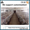 Рамы земледелия здание Сборные стальные конструкции птицы Pig пролить экспортера