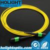 MPO Cable de conexión de fibra óptica monomodo.