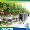 Canal de culture Nft agricoles Feuille de polycarbonate couvrant l'effet de serre