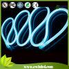 Luz de neón de la cuerda de Digitaces AC220V DMX RGB LED