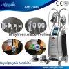 Cuerpo Cryolipolysis grasa adelgaza la congelación de la máquina