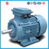 Yx3 hohe Leistungsfähigkeit WS-asynchrone Maschinen-Motoren der Serien-Ie2