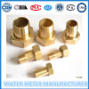 Connector d'ottone Parte per Watermeters