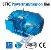 Мотор индукции высокой эффективности чугуна Ie3 4pole IEC