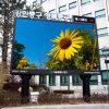 Double-piliers P6 à haute luminosité affichage LED SMD3535 Outdoor pour panneaux de publicité
