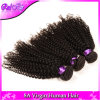 il tessuto brasiliano poco costoso riccio brasiliano dei capelli del Virgin dei capelli 4PCS del Virgin 7A impacchetta i capelli ricci crespi brasiliani del Virgin dell'Ali