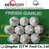 순수한 백색 자연적인 마늘 500g/Bag 크기 5.0