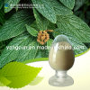 Acido naturale 98% di Ursolic dell'estratto della Rosemary