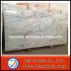 Losa de mármol blanca con el azulejo de Arabescato Corchia