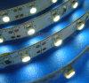 Alta tira blanca del brillo los 60LED/M 5050SMD LED con la garantía 2year