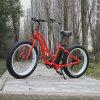 350W Bafang 모터 뚱뚱한 타이어 E 자전거 (RSEB-506)