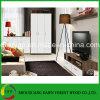 Modernes einfaches Art-Wohnzimmer-Set Hauptmöbel