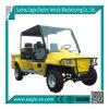 Automobile elettrica di caccia, 4 sedi, contenitore di carico, CE