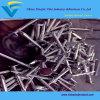 Clout Nail Clavo de cabeza grande usado para la fijación de tableros de techo y azulejos de pizarra Tamaños de 13 mm a 150 mm