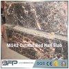 Lastra mezza di pietra di marmo rossa del materiale da costruzione del cuculo