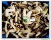 Catégorie edulis gelée a (4-6CM) 121503 de tranche de boletus (avec Stem&Cap)