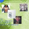 voor Dosering en Halveringstijd CAS 521-18-6 van het Poeder Stanolone/Androstanolone van de Verkoop de Mondelinge