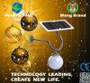Luz de rua do diodo emissor de luz do painel solar do monocristal com controle inteligente
