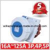 IP67 63A 2p+E EEG Angled Panel Mounted Socket