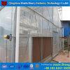 トマトのためのMultispanの農業のフィルムの温室