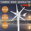300W Generator van de Wind van de Turbine van de Optie van de Volt van de Windmolen van AC12V de Groene Hyacint Gedreven