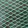 PPのKnotless鳥の証拠のネットか緑色の貨物網