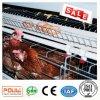 Цыплятина оборудований ферм цыпленка наслаивает клетку в Нигерии для сбывания