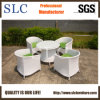 Grossistes de meubles de jardin (SC-B8217)