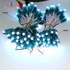DC5V impermeabilizan la luz del pixel del RGB LED de la cadena
